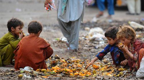 1.3bn tonnes of food produce wasted