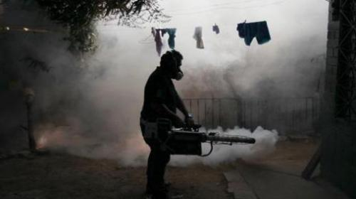 Three ways to combat Zika