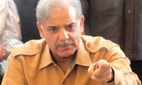 Shahbaz takes notice of basant festivities in parts of Punjab