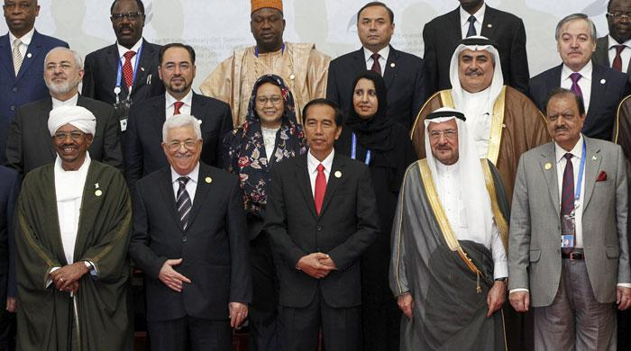 President urges resolution of Palestine issue at OIC summit
