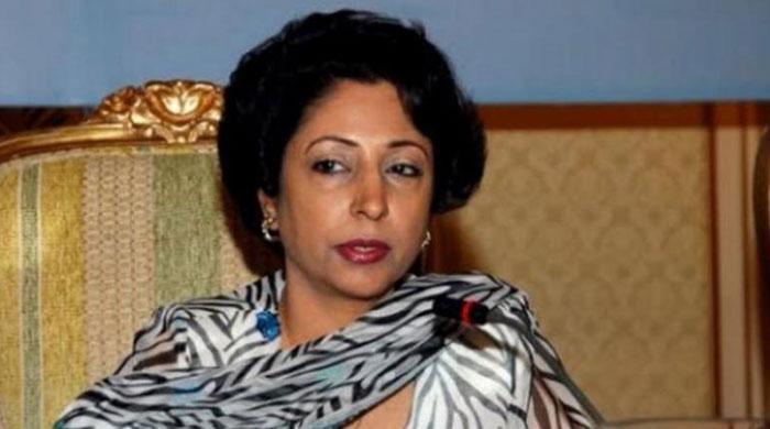 Time to make Pakistan member of NSG: Maleeha Lodhi