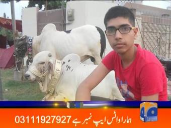 Geo News Headlines - 08 pm 27 August 2016
