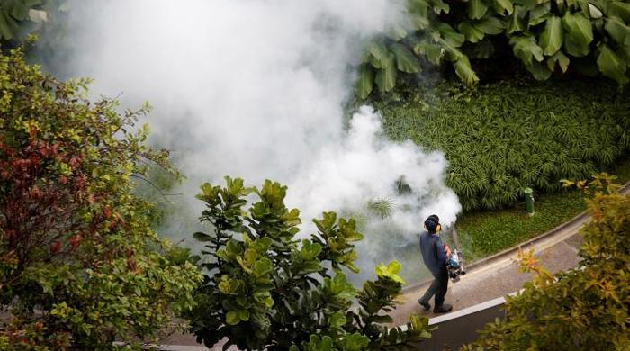 Singapore confirms 41 cases of locally transmitted Zika virus