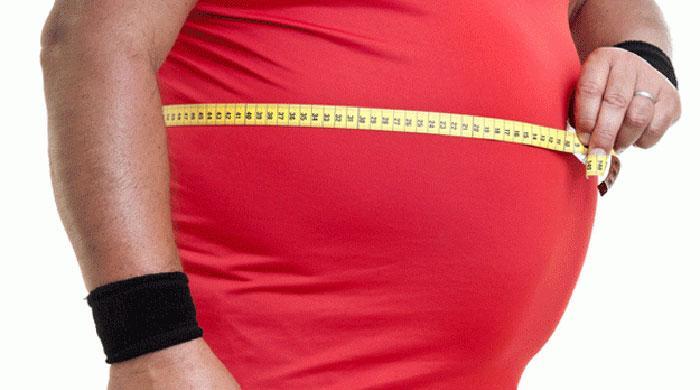 Obesity, violence hamper US progress on UN health goals: study