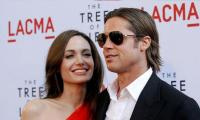 Brad Pitt skips documentary premiere to focus on 'family situation'