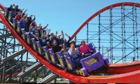 Roller coasters can help pass kidney stones
