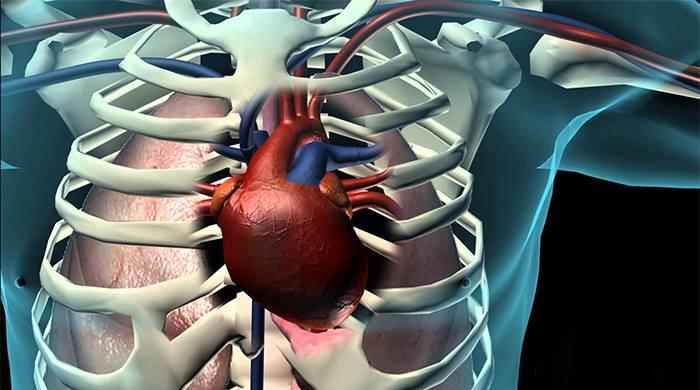 Video: 4 basic tips to prevent a heart attack