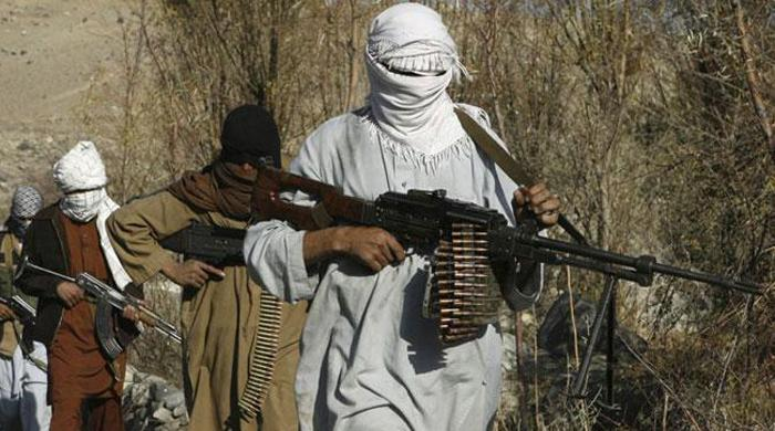 Bringing jihadis into the mainstream