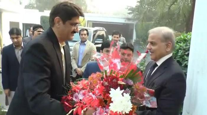 Shah calls on Sharif in Lahore