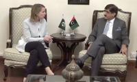 CM Murad meets US Consul General, urges early visa for tortured Larkana student