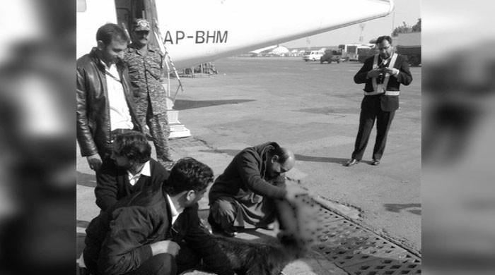 PIA sacrifices black goat before ATR flight