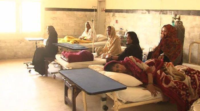 Three Chikungunya cases confirmed in Karachi