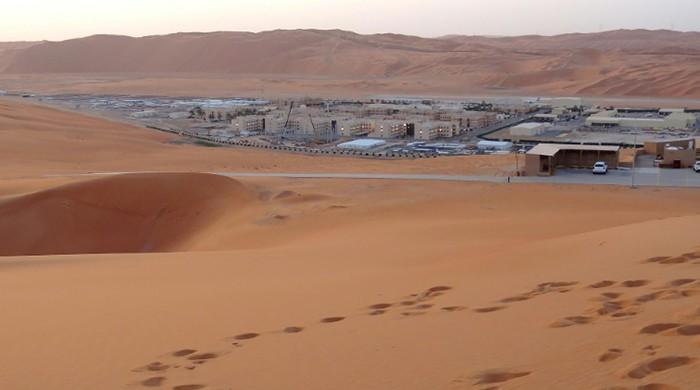 Saudi daily retracts Aramco sale claim