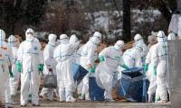 Taiwan confirms a new bird flu case, 4th this year
