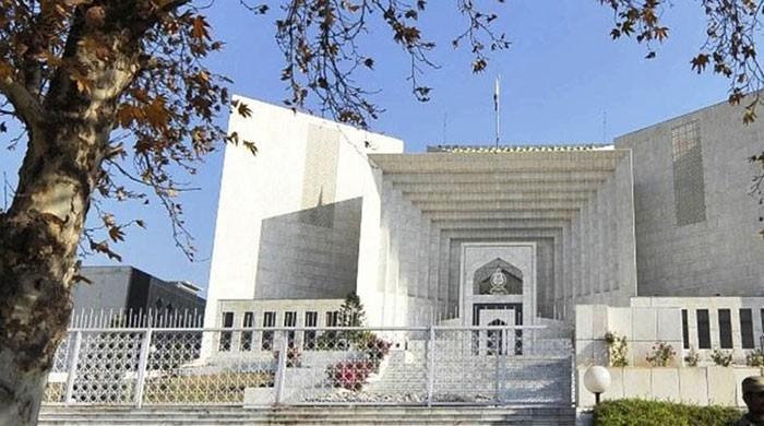 Panama case: PM is not seeking immunity under Article 248, counsel clarifies