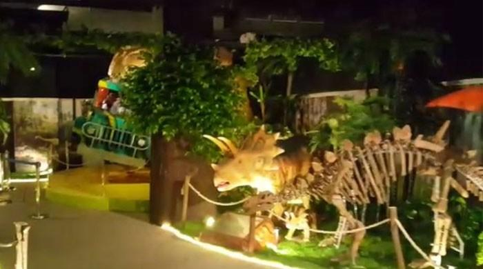 Karachi's first-ever dinosaur theme park opens for visitors