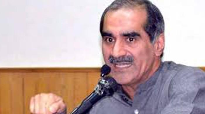 SC not given conducive environment for Panama case proceedings: Saad Rafique