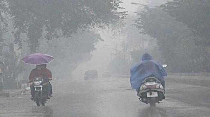 Seven killed in rain-related incidents in Punjab