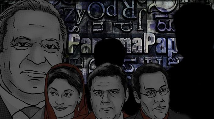 Who will lead the Panama Leaks investigation team?
