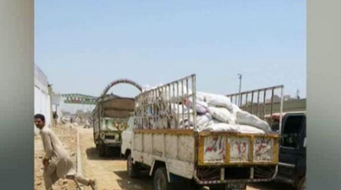 Customs seize 300 donkey hides from Karachi's Mauripur