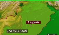 Man poisons himself, five children to death in Layyah