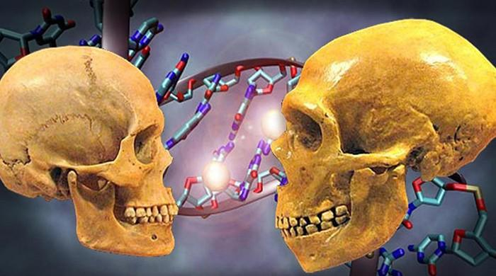 Prehistoric human DNA is found in caves without bones