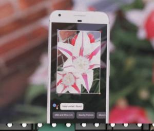 Google Lens seeks to change the way we view our cameras