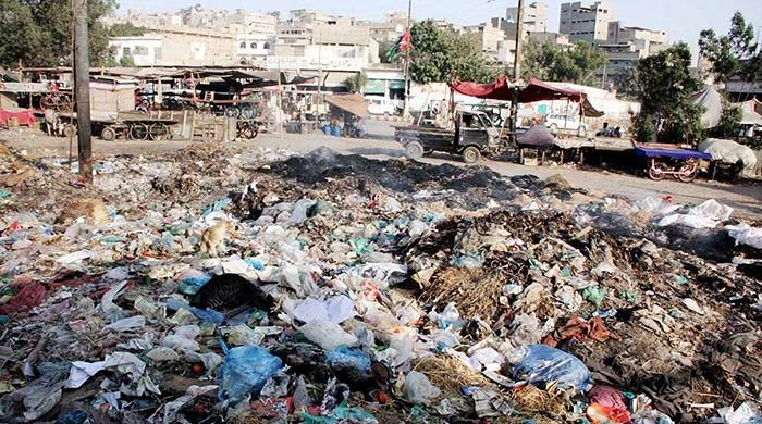 SHC seeks reply from Sindh govt over transfer of waste management responsibilities