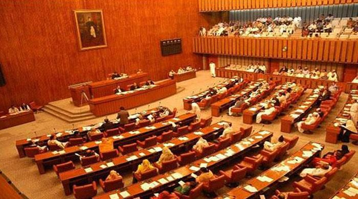 Saudi-led alliance: Defence, foreign secretaries to be summoned before Senate committee