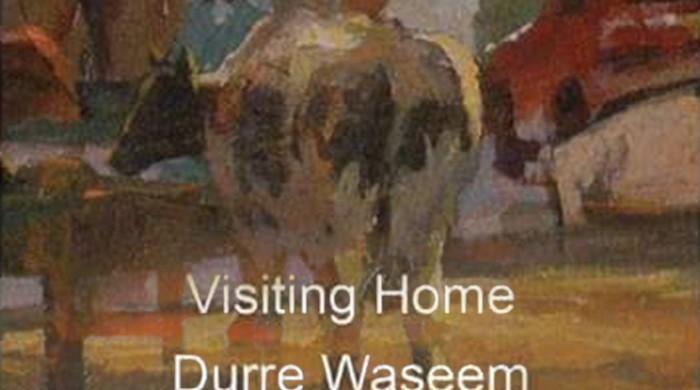 Visiting Home — Landscape series by Durre Waseem opens at Canvas Gallery