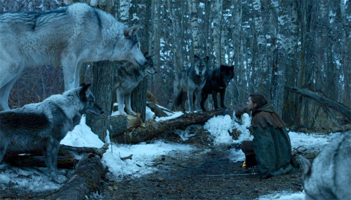 arya s bittersweet reunion with her direwolf explained by got