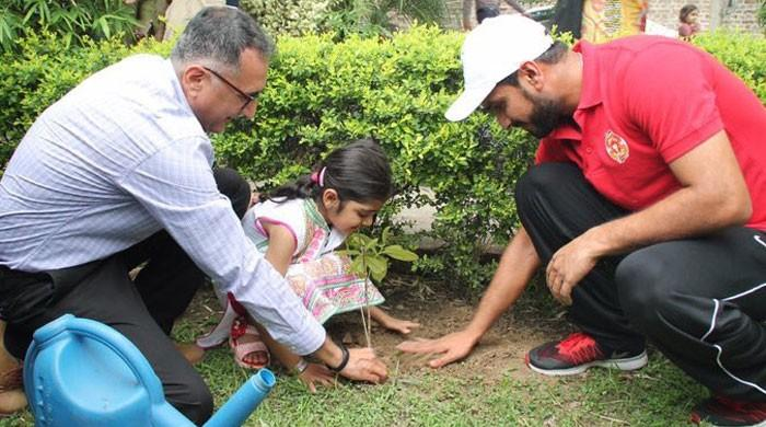 A greener Pakistan, one run and wicket at a time