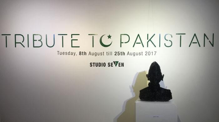 Studio Seven joins hands with artists to pay tribute to Pakistan