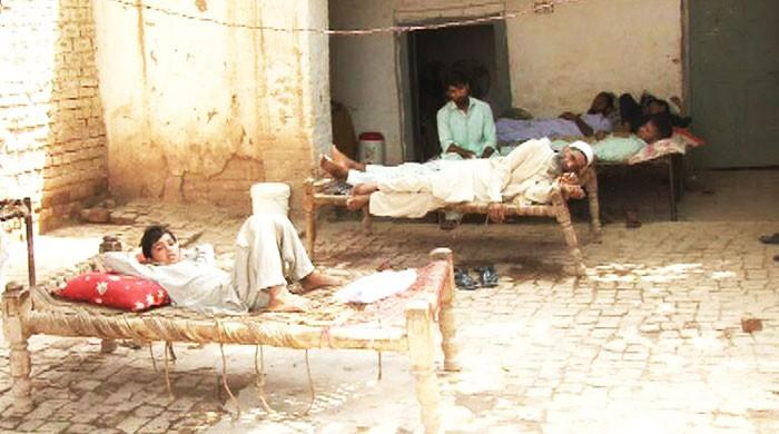 Dengue alert: Is Peshawar prepared for yet another outbreak?