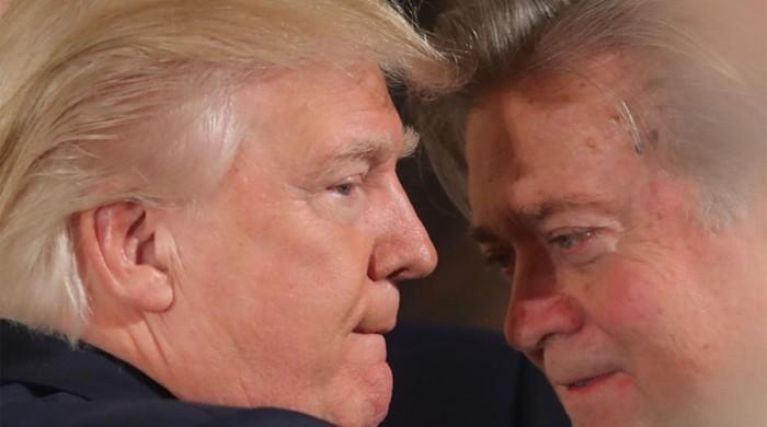 Freshest Trump 'dump': Controversial chief strategist Steve Bannon out