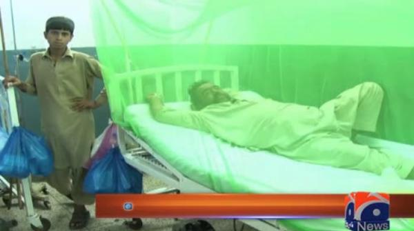 Dengue continues to wreak havoc as 69 new cases emerge in Peshawar 24-August-2017