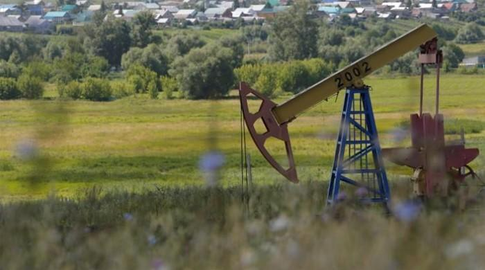 Oil holds near five-month high in most bullish week since July