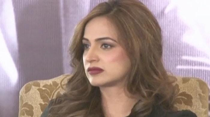 Noor dissolves marriage with singer Wali Hamid