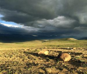 'Only fools go to Deosai'