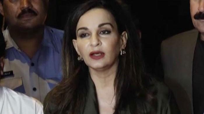 Musharraf hiding from courts: Sherry Rehman