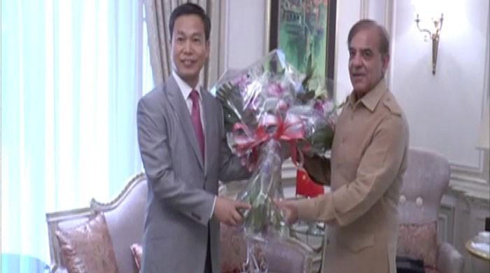 Chinese Consul General meets CM Punjab, wishes him happy birthday