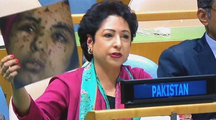 India is 'mother of terrorism' in S. Asia: Maleeha Lodhi hits back at Swaraj