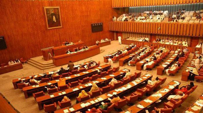 Senate passes resolution against disqualified person heading political party
