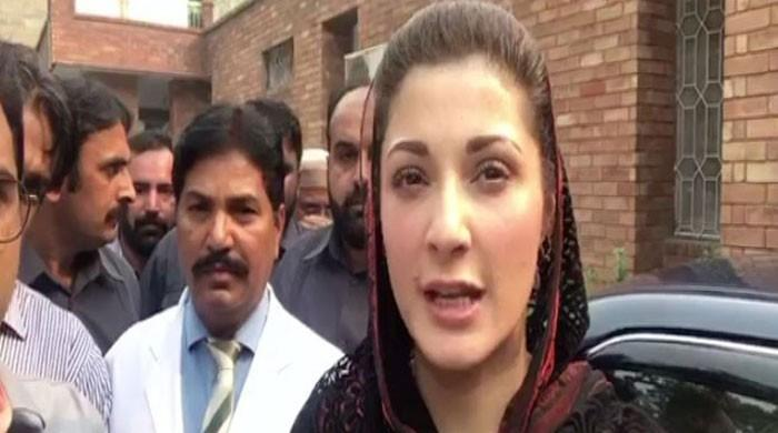 Good if institutions stay within constitutional limits, says Maryam