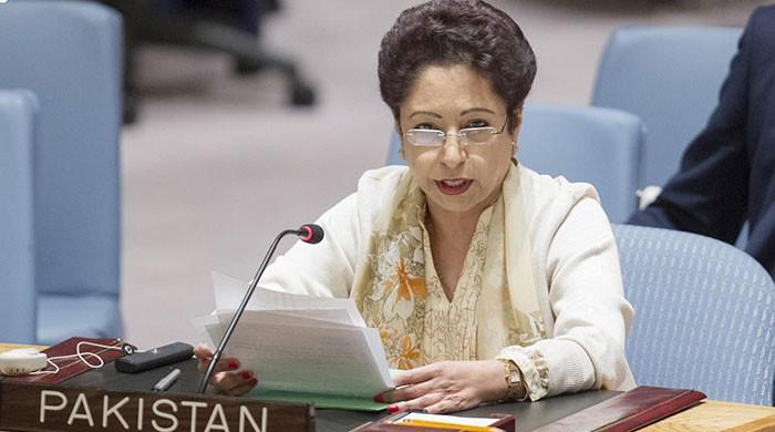 Pakistan's fight against terrorism has dismantled many terror groups: Maleeha Lodhi