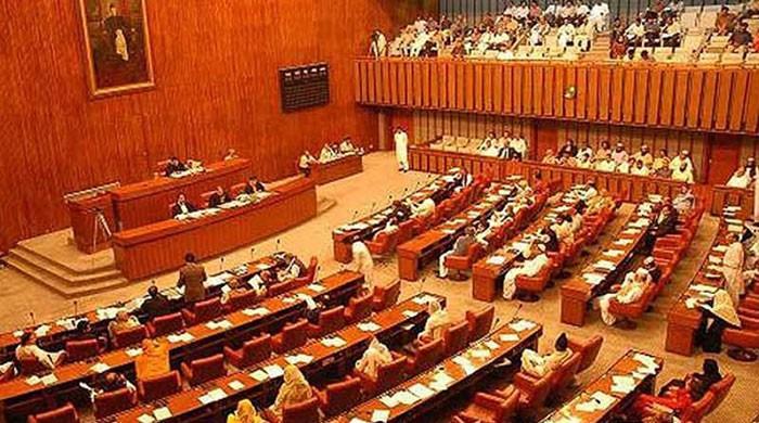 Senate passes Khatam-e-Nabuwat bill; fails to pass delimitation law due to low strength