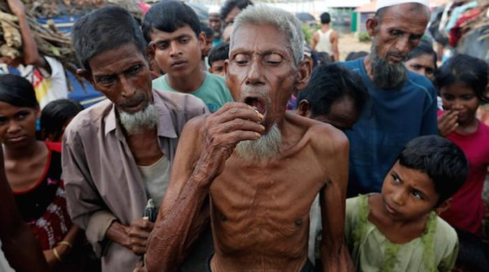 US condemns 'ethnic cleansing' of Myanmar's Rohingya