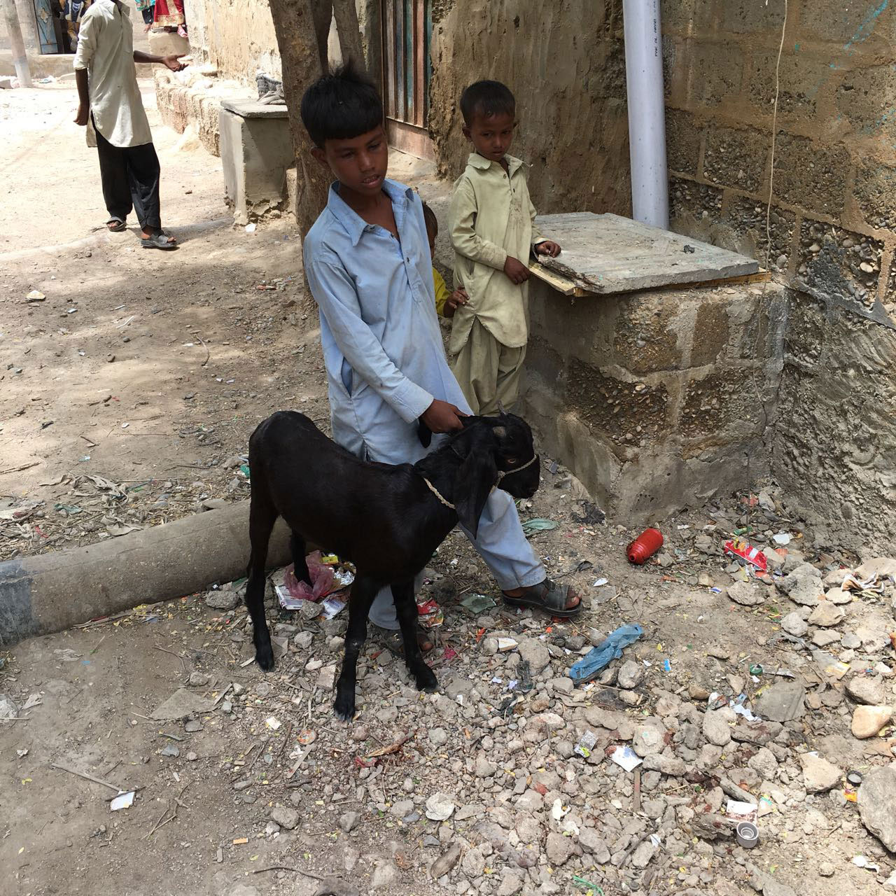 A child walks his pet goat in Karachi's impoverished Arkanabad neighbourhood.