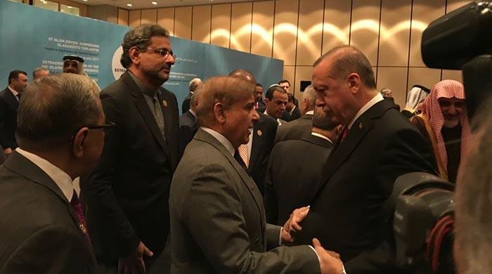 PM Abbasi, CM Shehbaz meet Turkish President Erdogan