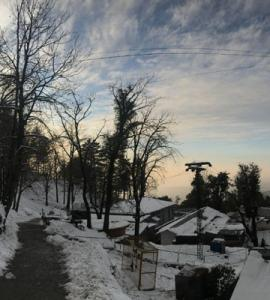 In pictures: As snow blankets streets of Murree